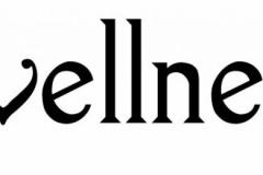 ideal-wellness-coaching-logo-FINAL