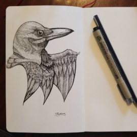 Inktober 18/31 Continuing Crow studies