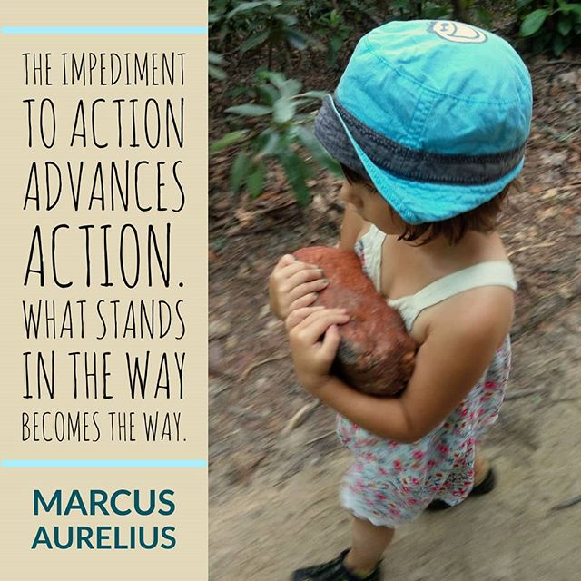 "I've been re reading meditations by Marcus Aurelius and have been sitting with this quote a bit.🧘‍♂️""The impediment to action advances action. What stands in the way becomes the way.""🚪It's definitely one that resonates with me as no matter how we plan our journey, life has a way of placing obstacles in our path.🚧We get to choose how to engage with them. It can motivate or deflate. I tend to take an obstacle as a challenge to prove I can overcome it, work around it, work with it, or pick it up and carry it along until I figure out what to do with it. It may prove to be useful after all.🛤️Also it's ok to just put it down and move on. There really are no rules to this thing. Just more what you might call guidelines"