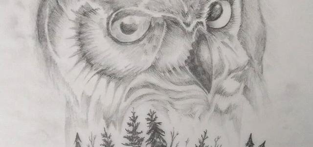 Tattoo design work in progress… It's a hoot