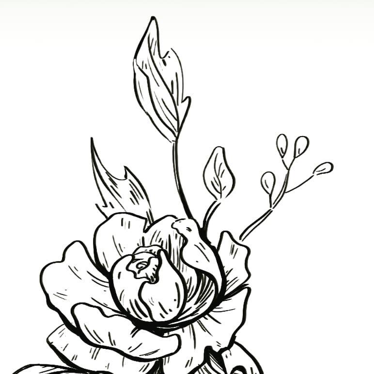 Lots of flower sketching going on this week
