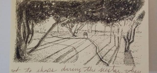 Spain Sketch Print: Jardin de La Sinagoga in Astorga, Spain